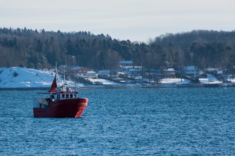 Fiskebåt i oslofjorden