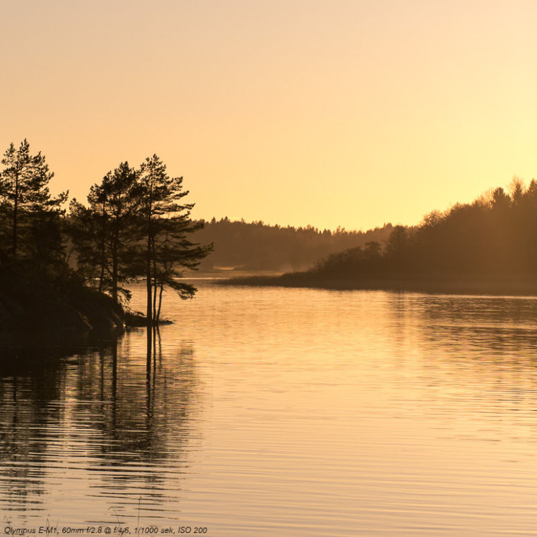 Vansjø i solnedgang