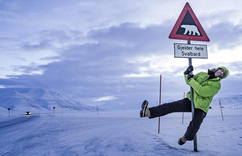 isbjørnskilt Svalbard